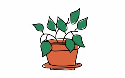 Inclusive swag: Team plants
